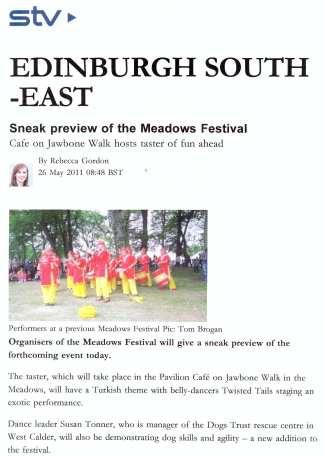 STV Meadows Festival Promo